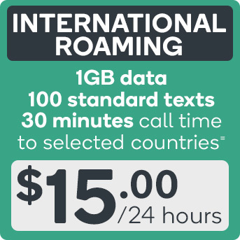 International Roaming Data